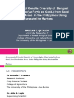 Assessment of genetic diversity of Benguet Pine (Pinus kesiya royle ex Gord.) from seed production areas in the Philippines using microsatellite markers