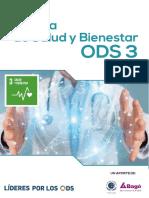Politica de Salud y Bienestar ODS 3