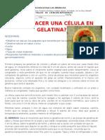 TALLER CIENCIAS NATURALES ELABORACIÓN DE LA CELULA EN GELATNA