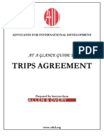 Guide to TRIPS Agreement
