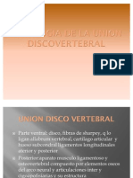 Patologia de La Union Disco Vertebral