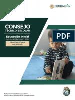 Guía Primera Sesión Ordinaria CTE INICIAL 2021