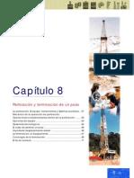 ABC Petroleo y gas Cap 08