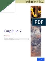 ABC Petroleo y gas Cap 07