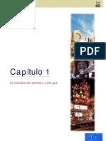 ABC Petroleo y gas Cap 01