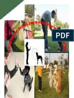 Lenguaje de señas para perros sordos