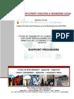 Etude de Faisabilité de La Mise en Place Dun Dispositif DIE Pour Le MEF Rapport Provisoire
