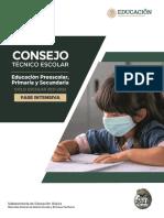 Guía CTE Fase Intensiva PPS FINAL 20 de Agosto de 2021