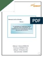 La contribution de l'audit interne dans la gestion des risques opérationnels via l'élaboration d'une (1)