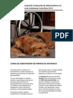Curso de Adiestrador de Perros de Asistencia