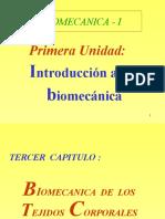 Tejido Trofoconectivo (PPTshare)