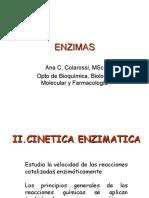 CINETICA ENZIMATICA BQvet 2007