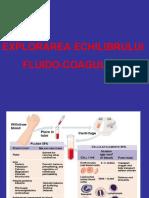 1. EXPLORAREA EFC_Sd. hemoragipare.ppt LP9 10