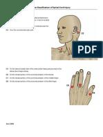 Key Sensory Points
