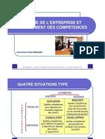 Strategie Entreprise Dev Compet Meigant