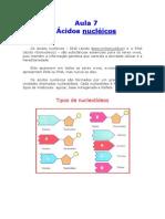 Biologia_-_Aula_07_-_Ácidos_Nucléicos