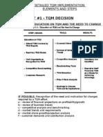 Tqm Implementation Elements and Steps