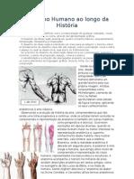 O Corpo Humano ao longo da História