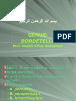Lecture 23 Bordetella