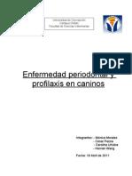 Enfermedad Periodontal y Profilaxis