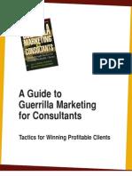 Guerilla Marketing for Consul Tings