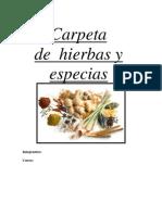 Hierbas Y Especias Descripcion y Usos