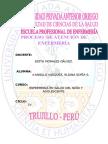 PROCESO  DE ATENCIÓN DE ENFERMERÍA ESCOLAR