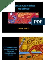 Esencias Chamanicas de México