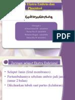 Selaput Ekstra Embrio Dan Plasentasi