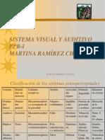 PPB-I sentidos 2