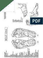 Reflexologia Podal - Masaje Zonal (Con Imagenes, 24p)[1]