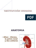 Obstruccion_urinaria 1