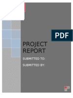 Entrepreneurship Project Report