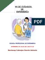 Enfermeria en Salud Del Adulto Iii_plan de Cuidados_lic Maria Altamirano