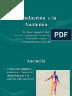 1[1].1 - Generalidades de huesos, músculos y articulaciones