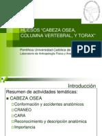 ANATOMIA UCV OSTEOLOGIA