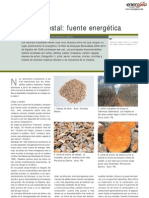 Biomasa Forestal Fuente Energetic A