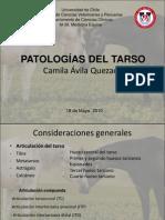 Patologias Del Tarso