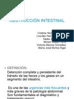 obstruccion_intestinal2