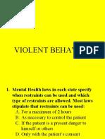 06. Violent Behavior