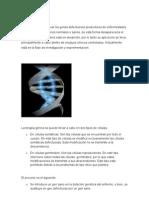 Terapia génica y medicina reproductiva