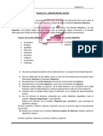 Access. Práctica nº1