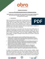 Consultoría de Investigación y Sistematización - TDR