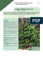 InocarpusFagifer