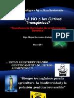 Por Que No a Los Cultivos Transgenicos