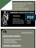 Advocacia Penal FINAL
