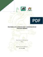 Acciones de conservación de Tortugas Marinas en Guatemala durante 2005