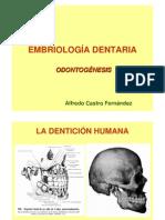 odontognesis-091019121801-phpapp02
