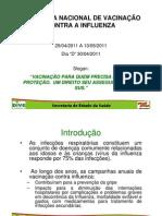 Informe Influenza 2011
