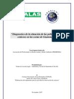 Diagnóstico de cetáceos en Guatemala